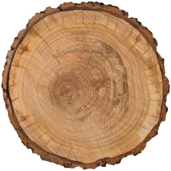 Pebbles Hen Hadfield Warm & Cozy - Tree Trunk diecut cardstock