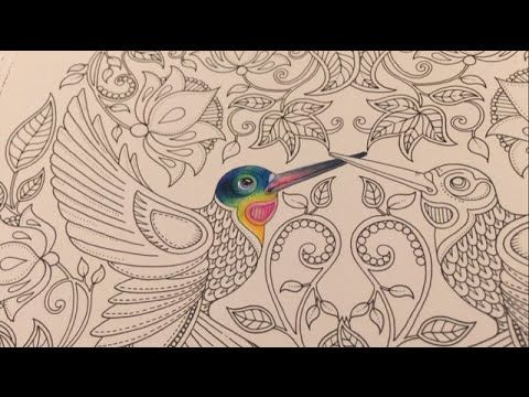 Coloring Tutorial The Hummingbird Part 1 5