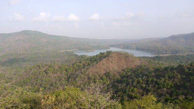 Things To Know About Sanjay Gandhi National Park
