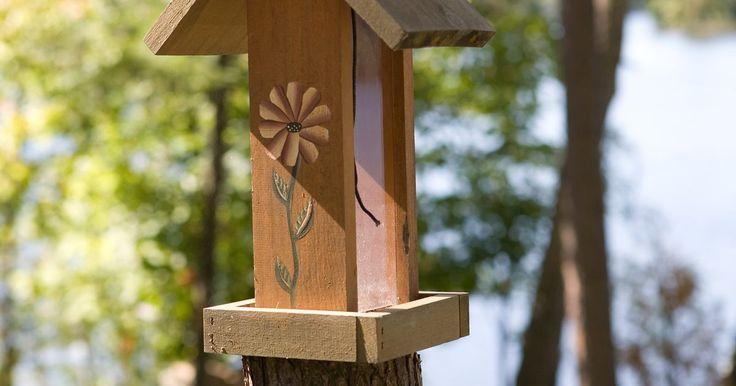 Como impedir que formigas subam em alimentadores para pássaros. O objetivo de ter alimentadores no jardim é atrair pássaros, e não formigas. Esses insetos sociais buscam por comida em todos os lugares, sendo assim, os alimentadores para pássaros são alvos oportunos. As formigas podem sentir o cheiro de comida a longas distâncias, e, para elas, viajar para roubar a comida dos pássaros não é um problema. Quando ...