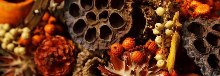 Een natuurlijke geur in huis zonder chemische dure parfum. Het is mogelijk, het is goedkoop en het is fijner voor mensen gevoelig voor chemische parfums.