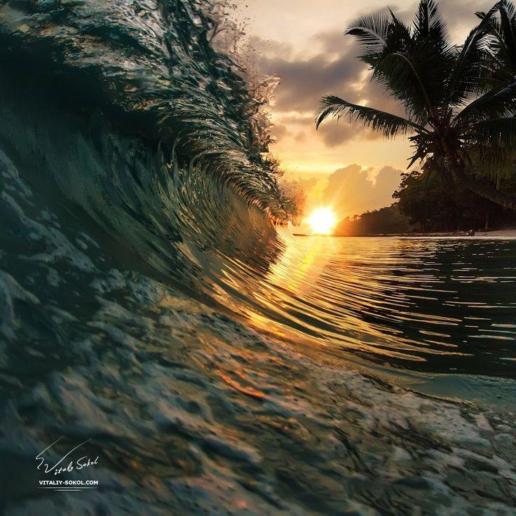 palm beach by Vitaliy Sokol on 500px