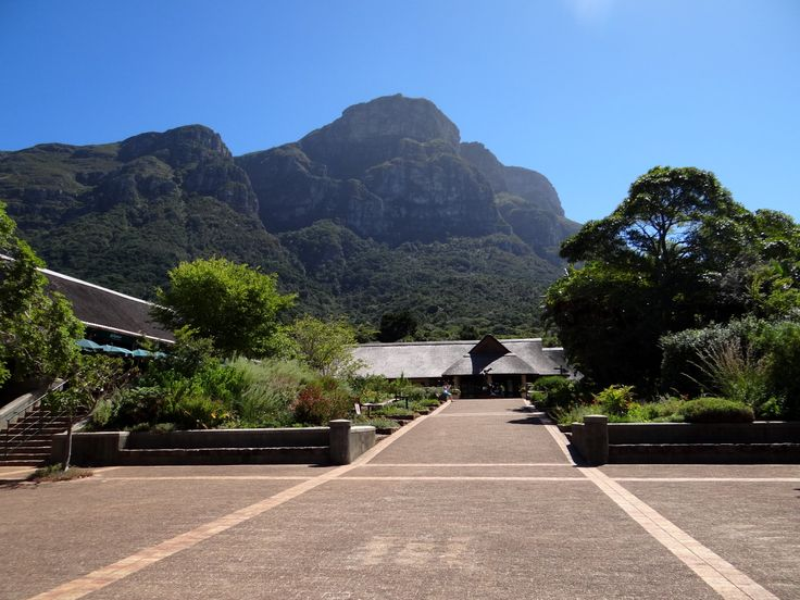 Kirstenbosch National Botanical Garden is one of Cape Town's most beautiful places. There's no better way than to spend the morning strolling around the gardens, admiring the majestic mountain, stunning flora and amazing art sculptures.
