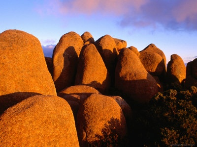 Dolerite Boulders at Mt.Wellington, Tasmania, australia