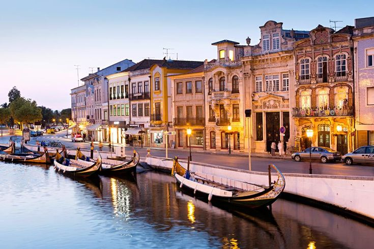 5426 best News and Articles Portugal images on Pinterest