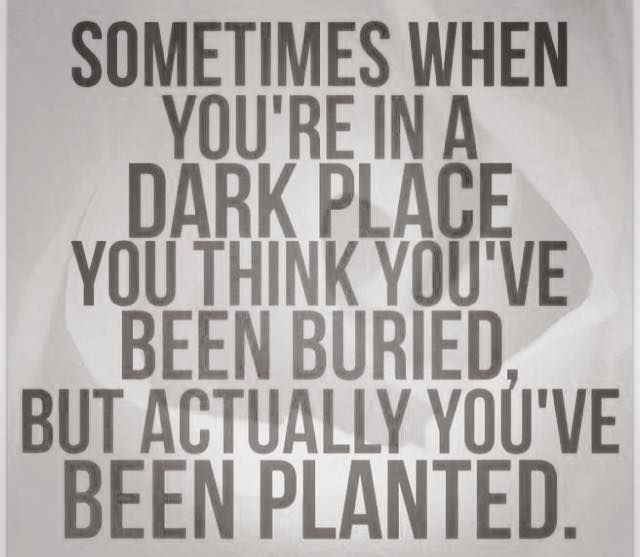 This is certainly a great way to look at your darkest places in life! Especially when you take the time to notice your own growth afterwards!!