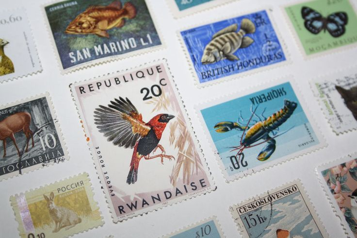 50 Postage Stamps Animals Wildlife Vintage Nature Themes Mixed Media Collage Paper Art Collectibles Resin Jewelry Scrapbooking
