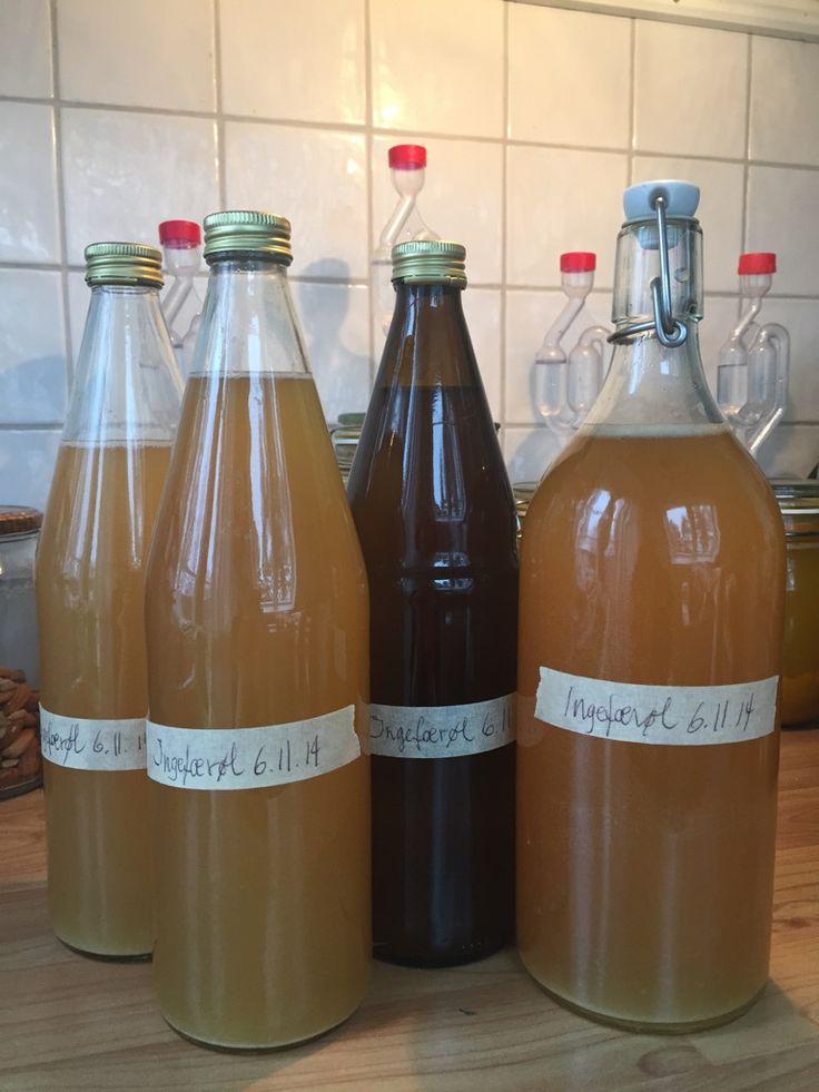 fermentert Ingefærøl oppskrift og fremgangsmåte