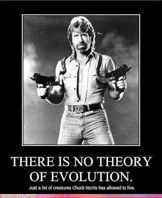 Chuck Norris Jokes | The 50 Best Chuck Norris Facts & Memes (Page 4)