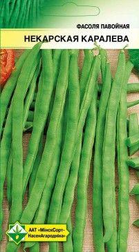 Среднепоздний сорт германской селекции 75-80 дней Растение вьющееся, высотой до 2,5 м, нуждается в опоре. Бобы зеленые, длиной 24-26 см, очень мясистые. У незрелых бобов жесткий пергаментный слой не развит. В пищу используются молодые стручки целиком и вызревшие семена после термической обработки. Обязательна подвязка к опорам.