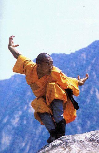 Shaolin crane style - this position looks similar to skateboarding. I wonder if…