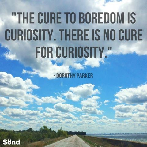 """The cure to boredom is curiosity. There is no cure for curiosity."" - Dorothy Parker"