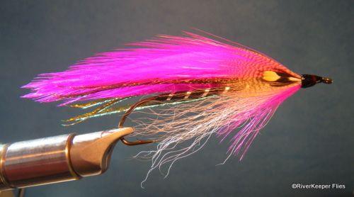 Carrie Stevens - Pink Beauty | www.johnkreft.com
