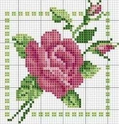 10302021_466158166853639_5686590371146402955_n.jpg 246×256 pixels