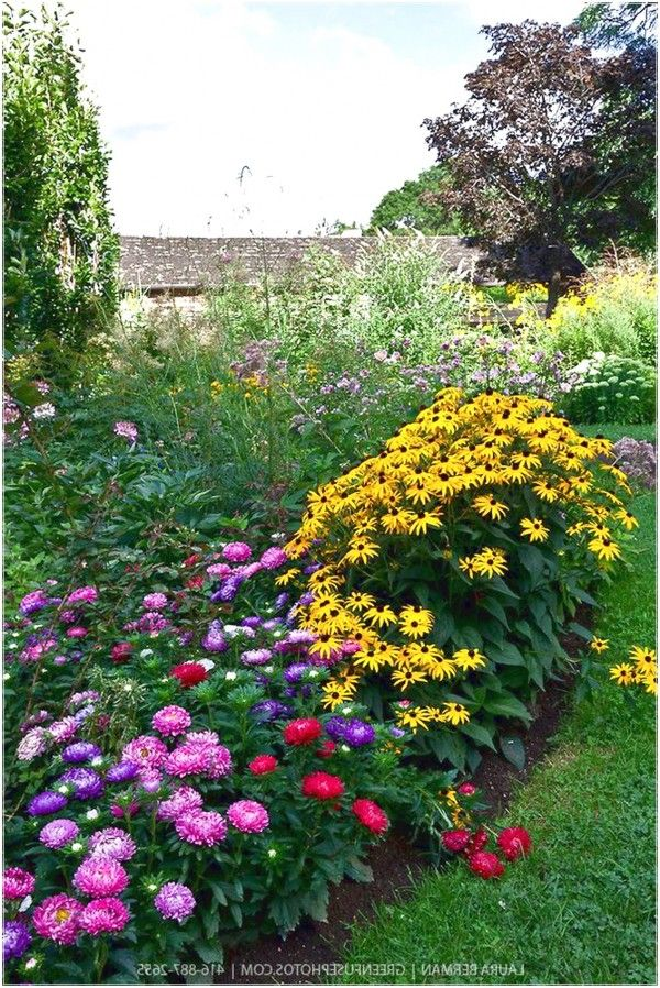 image perennial Arranging Flowers from the Garden with Perennials Flower Bed perennial flower garden