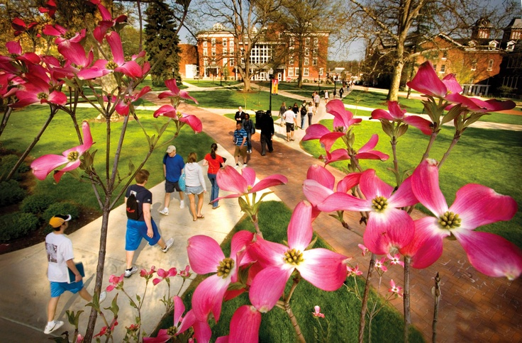 The Quad at Cal U attracts students from all over campus between classes. #caluofpa