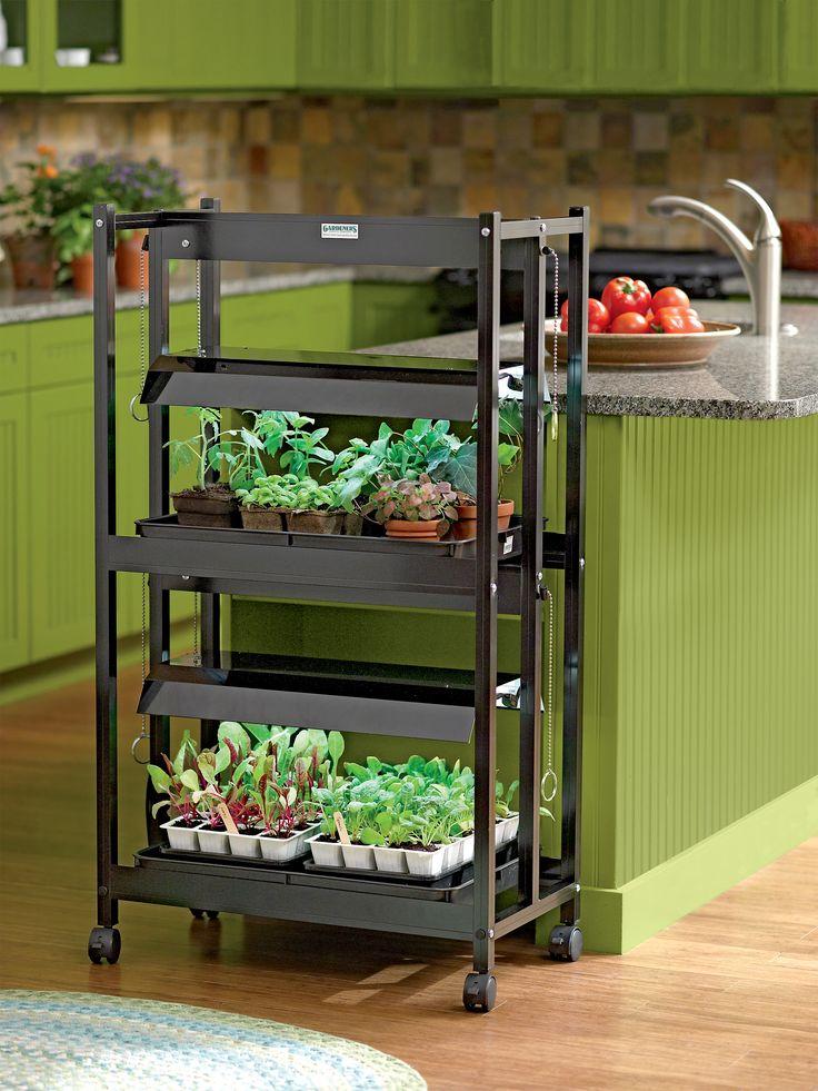 indoor gardening lights Best 25+ Grow lights ideas on Pinterest | Grow lights for