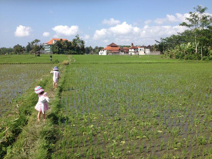 21/52 :: Walking Through Paddy Fields in Ubud, Bali