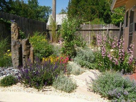 167 best california native plants usda zone 9b images on pinterest landscaping landscaping. Black Bedroom Furniture Sets. Home Design Ideas