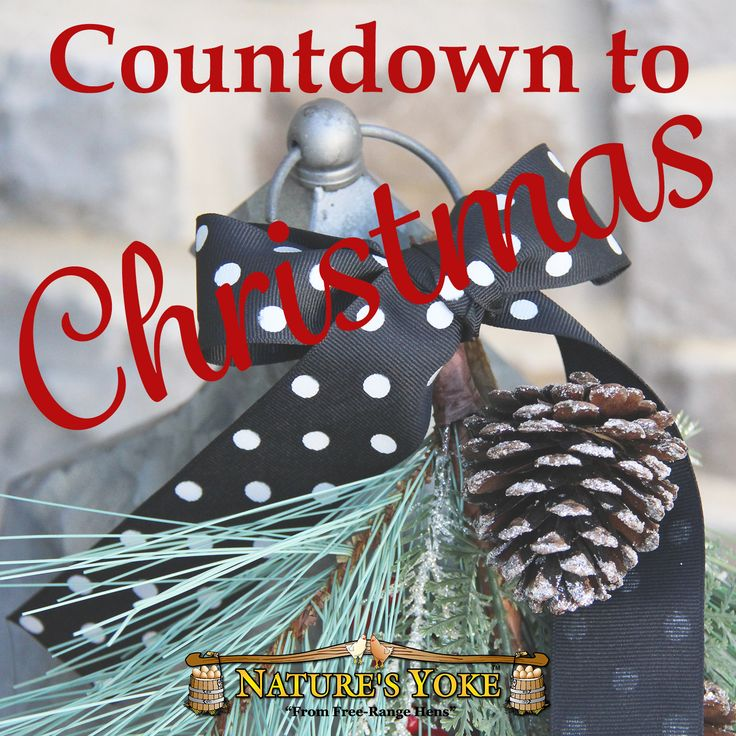 Getting excited! | Christmas countdown, Christmas ...