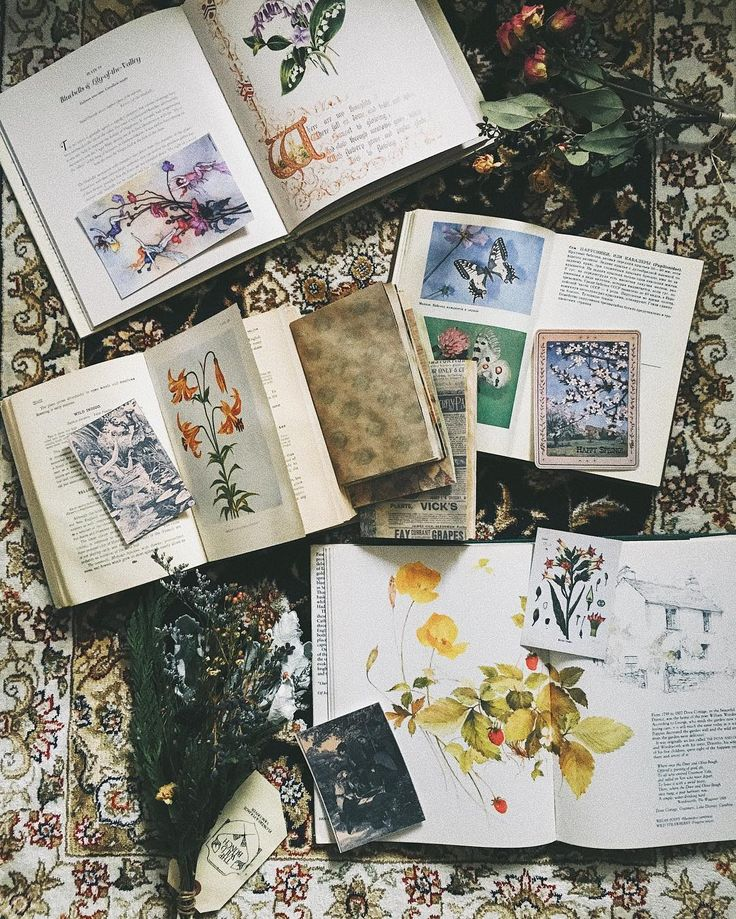 Inspiration for my junk journals. It is interesting to see how different artists create different styles of their junk journals. I would say mine are so much related to nature, flowers, green, vintage and romance. Please give me some ideas of what you like to see ;) #vintage #vintagenote #vintagebook #vintagephoto #vintageletter #nature #naturestudy #naturelove #wild #wildchild #woodland #intothewild #intothewoods #liveauthentic #livequite #junkjournal #journal #journaling #herbalife…