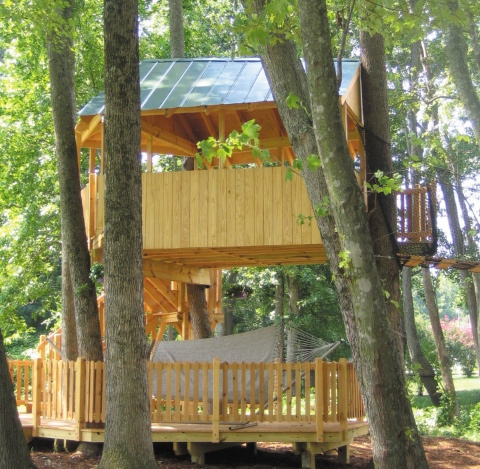 tree house for the grandchildren & a spot for my hammock: Trees Houses, Tree Houses, Treehouse Ideas, Houses Anyon, Fun Houses