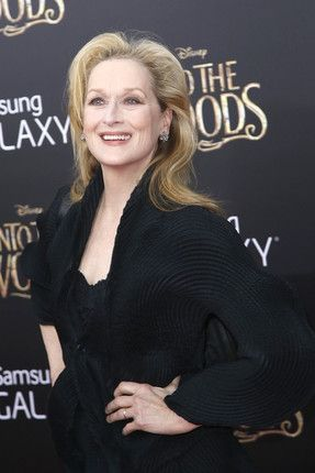 Meryl Streep's Latest Movie Boyfriend Describes Their Upcoming Project Together   Vanity Fair
