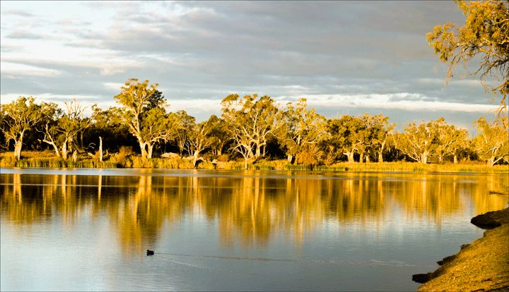 Reflections on The Murray River, Victoria, Australia