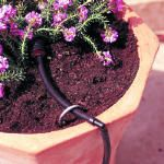 How to create a drip irrigation system for a container garden. This could certainly be applied to any garden patch around the house.