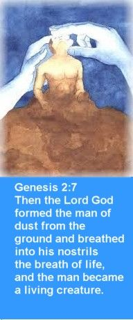 Genesis 2:7 Then the Lord God formed the man of dust from ...
