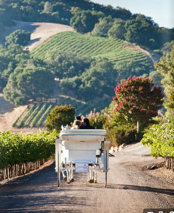 Prettiest views of rolling wine country hills