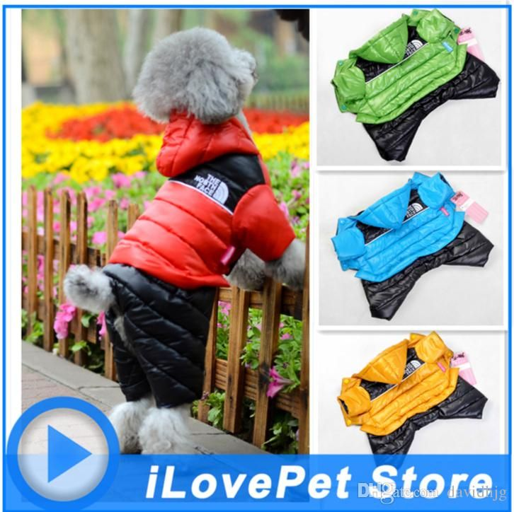 Wholesale cheap pet supplies online, brand - Find best pet dog clothes down jacket coat of new fund of 2017 autumn winters is bright with cap four feet at discount prices from Chinese dog apparel supplier - davidhjg on DHgate.com.