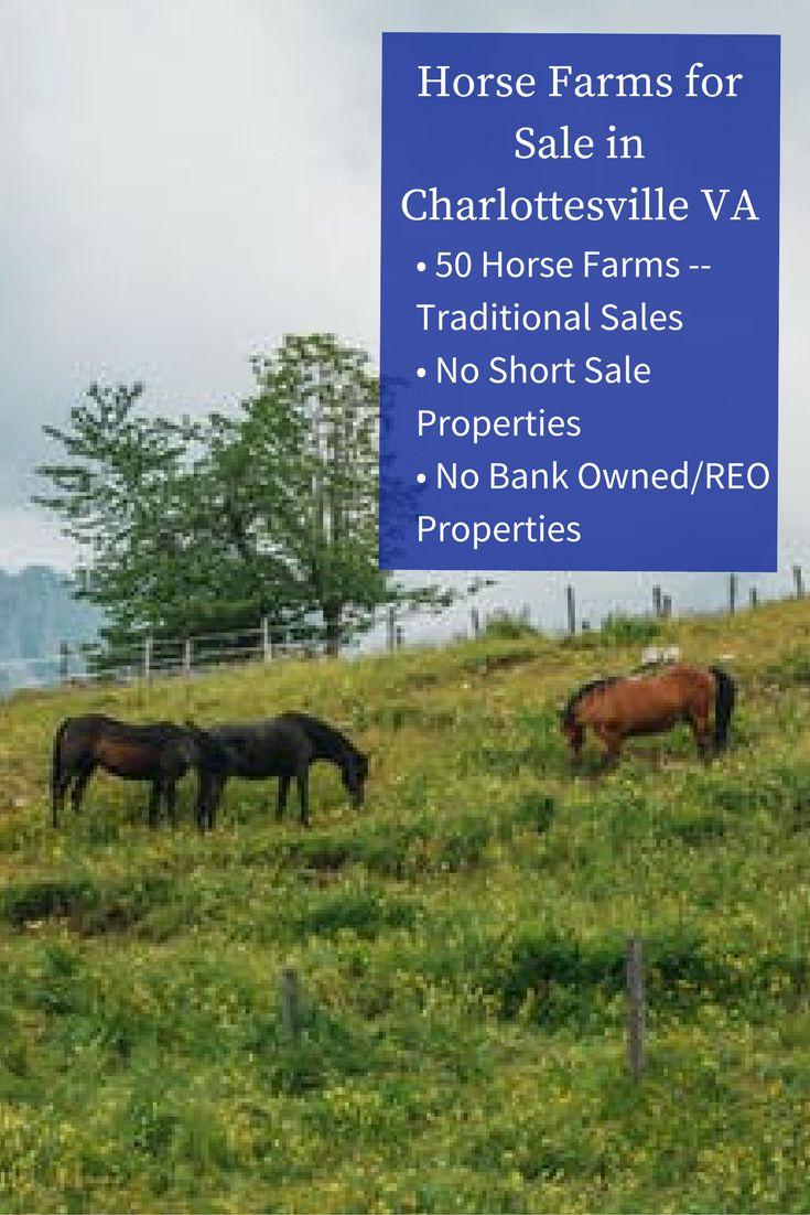 15++ Farm animal auctions near me ideas in 2021