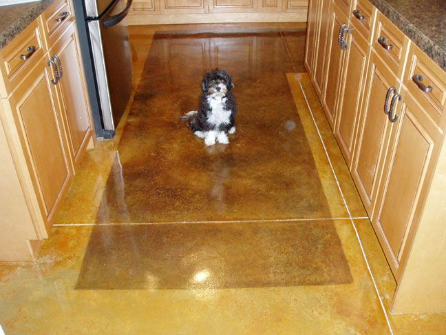 Concrete stained floors acid staining concrete cement for How to clean acid stain floors