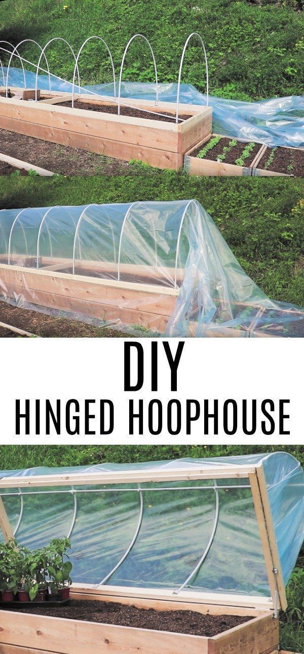 He Attaches PVC Pipes to A Garden Bed For This Genius Garden Hack! #organicgardening