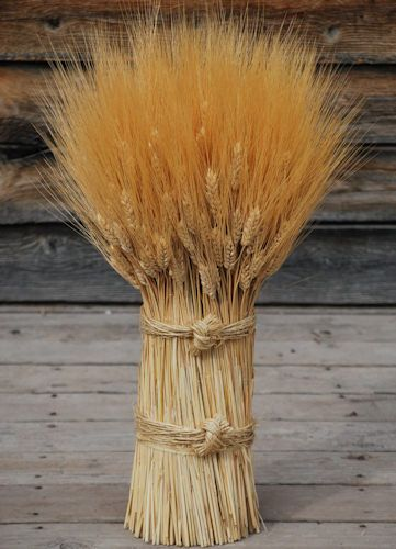 Blond Vertical Wheat Cone  Home Decor Products I Love  Wheat decorations Decor Wheat