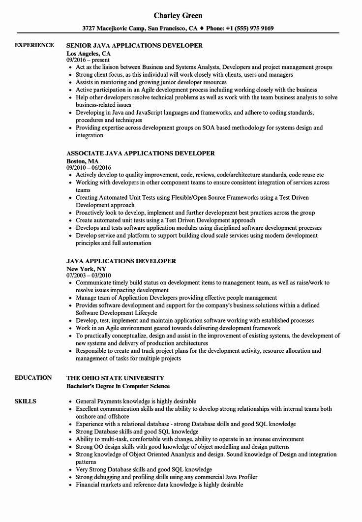 25 Core Java Developer Resume in 2020 Sales resume examples