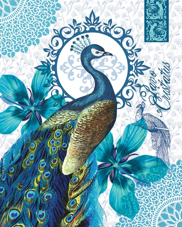 Peacock print by FloraLiving on Etsy