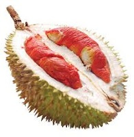 durian merah: Fruit Gardens, Fruitsoorten Vans, Exotic Fruit, Fruit Gardening, Fruit Trees, Vegetable