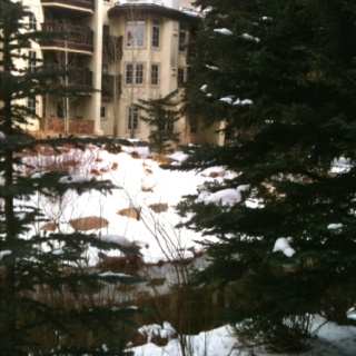 View from hotel in Vail, CO