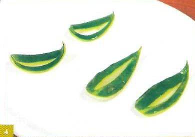Tecnicas de cocina Paso a paso Hojitas caladas de zucchini o pepino