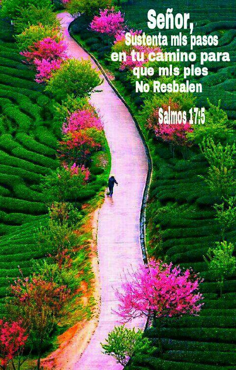 Salmos 17:5-7 Sustenta mis pasos en tus caminos, Para que ...