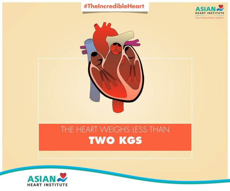Here's a little known fact about the extraordinary organ. #TheIncredibleHeart! #AsianHeartInstitute