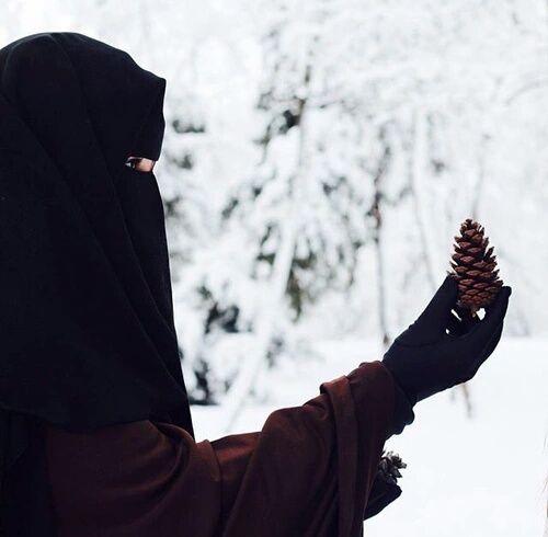 hijab, islam, and niqab image