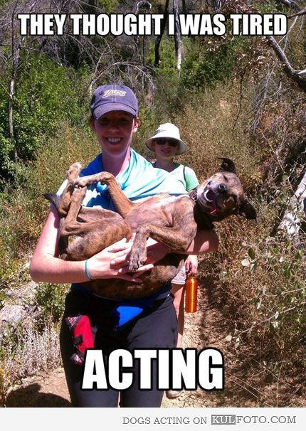Lucy actually did this to me at a 5k run up a mountain in Virginia... it was 100 degrees with 100% humidity!!!