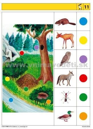 Logico Primo Lesné zvieratá - autokorektívne karty