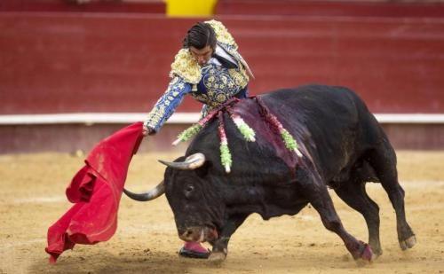 Ambiente: #Bimbo #malato di #cancro sogna di diventare torero: animalista gli augura di morire prima (link: http://ift.tt/2e8Ylsp )