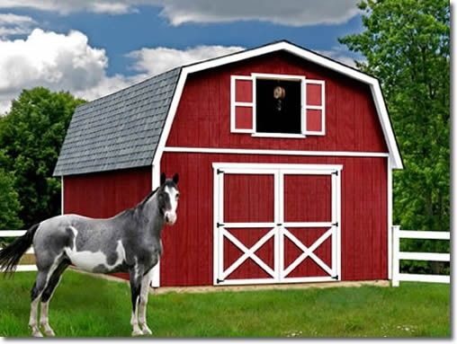 Roanoke 16' Barn Style Wood Storage Shed Kit - 4 sizes available #StorageShedsOutlet