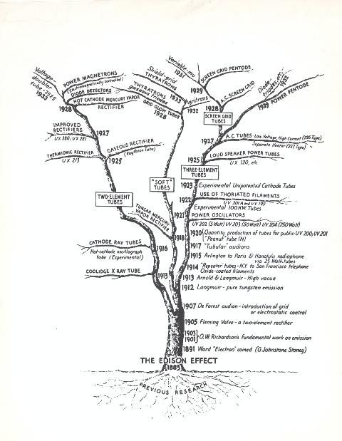 12 best family tree images on pinterest