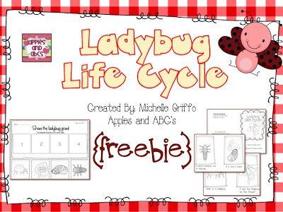 Apples and ABCs: Life Cycle of a Ladybug FREEBIE!